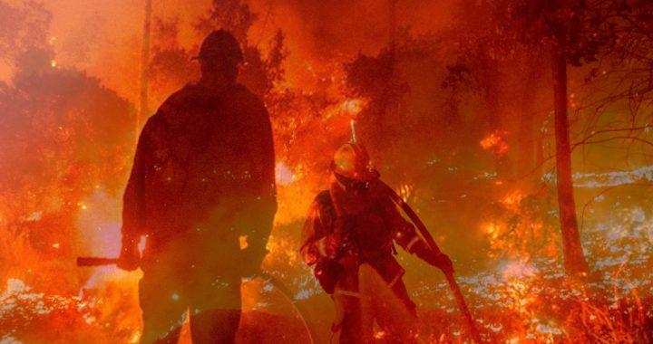 wildfireee